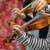 Ateliers de violons du PHAKT - Centre Culturel Colombier, RENENS (35)
