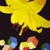 N° 2 : PAPIERS PEINTS de Jean François Karst. Autour de la thématique du motif et dans la continuité de la résidence proposée en 2007 à Jean François Karst, l'édition reprend les 7 peintures réalisées par l'artiste suite à un temps de création rapporté au territoire du Centre Ville de Rennes et enrichi de rencontres avec les habitants du quartier et les usagers du PHAKT - Centre Culturel Colombier.