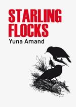 Starling Flocks-visuel web